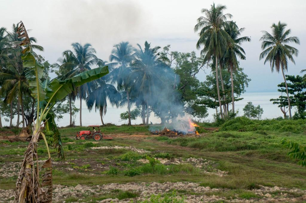Auch an Orten in Thailand betreiben Farmer Brandrodung. Hier: der Südosten Koh Lantas