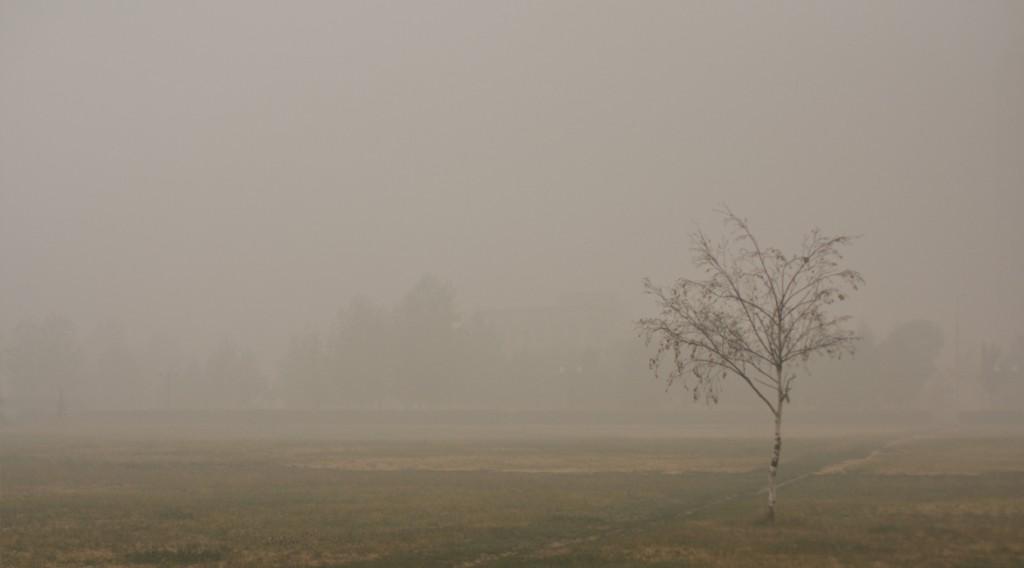 Gesundheitsbelastung durch Smog | Foto: Mika Stetsovski