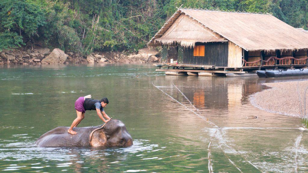 Mahut mit Elefant neben unserer Unterkunft auf dem River Kwai