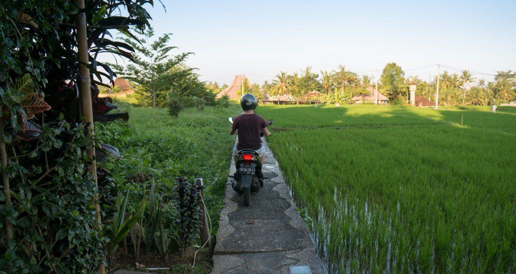 Sören auf dem Roller auf dem Weg zu unserer Wohnung in Penestanan