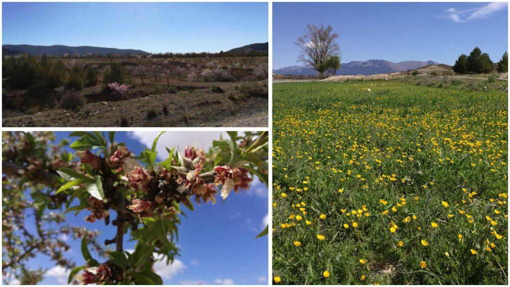 Spanien im Frühling
